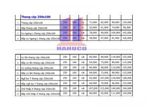 Thang cáp 250x100