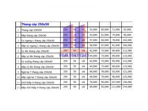 Thang cáp 250x50