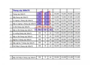 Thang cáp 300x75
